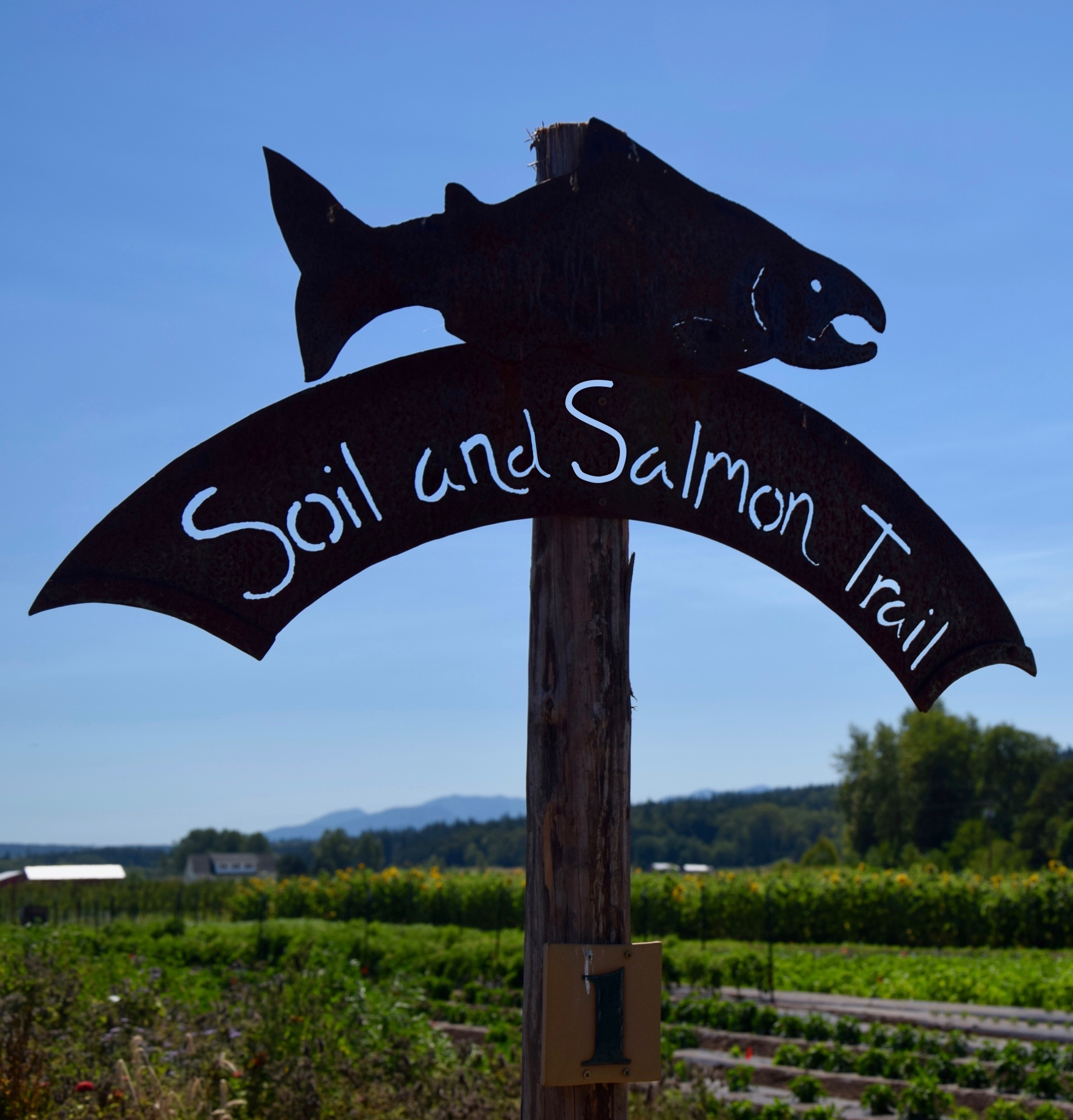 Finn River Soil and Salmon Trail Sign