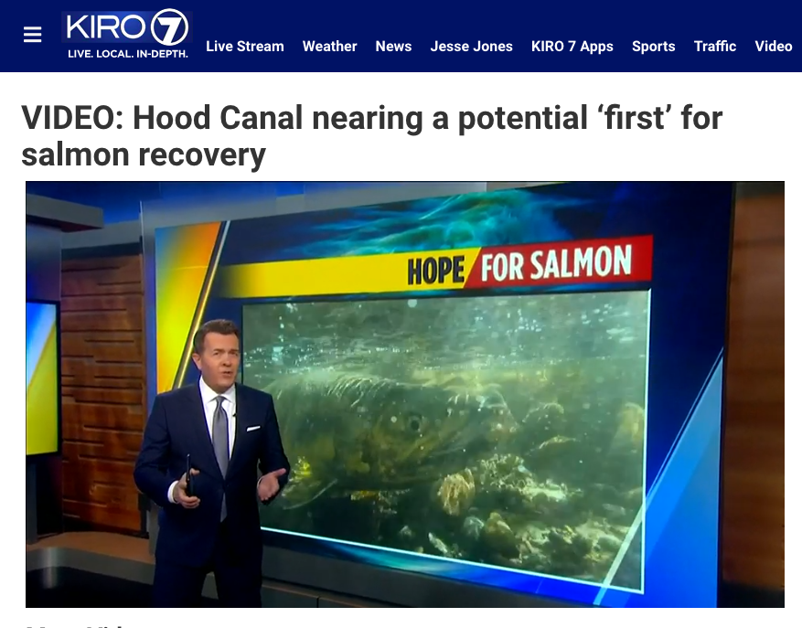 News Story: Hood Canal nearing a potential 'first' for salmon recovery